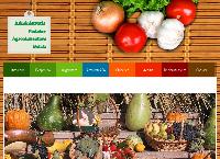 Site Administratia Pietelor Agroalimentare SA