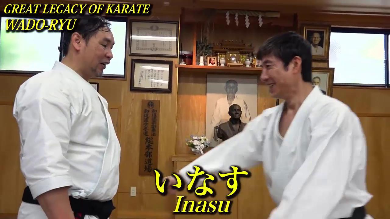 Ce inseamna Wado Ryu