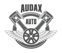 AUDAX PIESE AUTO