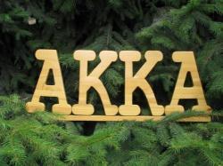 Akka SRL