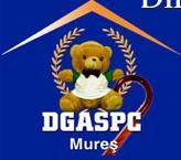 Directia Generala Pentru Protectia Drepturilor Copilului Mures