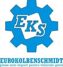 Euro Kolbenschmidt S.r.l