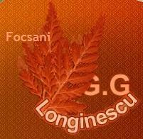 """Grupul Scolar """"G.G. Longinescu"""""""